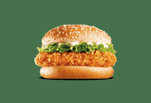 Chickni Burgy